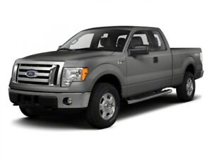 2010 Ford F-150 XLT *NO ACCIDENTS*