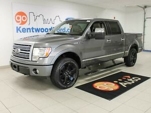 2009 Ford F-150 PLATINUM , NAV , ROOF , LEATHER