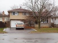 Detached three bedroom house in South Guelph