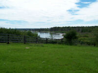 REDUCED!Over 19 acres with 800 +/- ft. of Oceanfront in Rose Bay