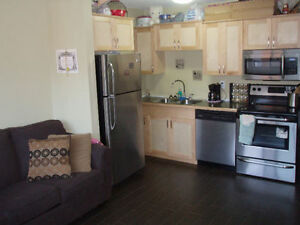 Bachelor Condo in Cathedral* Reno'd* Furnished or Unfurnished*