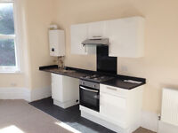 Newly refurbished Studio Flat