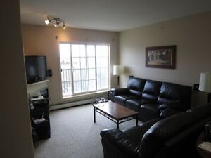 Furnished Home *FREE New Gym* 2 Parking, Top Floor Condo