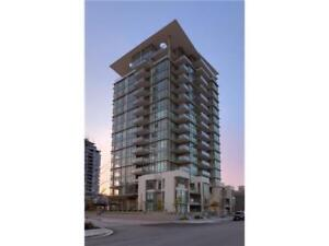Partly Furnished 2 Bed 2 Bath High Rise Apartment(White Rock)