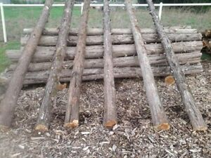 Cedar Fence Posts $6.00 & up  (assorted sizes available)