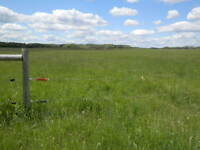 320 acres Pasture/Hayland R.M. of Cana No.214