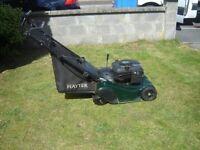 as new Hayter Harrier petrol push roller mower lawnmower