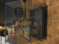 Hamster cage and much more!