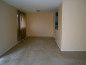Only $950 Per Month For 3 Bedrooms
