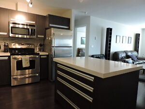 Furnished 2 Bedroom Condo in Rosewood for Rent