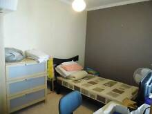 Rooms in great apartment.  Short terms but great bargain Victoria Park Victoria Park Area Preview