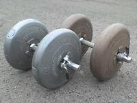 66 lb 30 kg Big Grey Dumbbell & Barbell Weights
