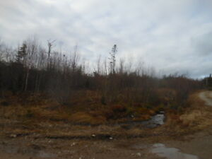 Meadow Cove Rd. (Lot G), Dipper Harbour (Water Access)