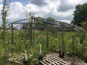 Free green house in Scarborough