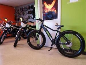 Electric Bicycle/ Fat bike Surface 604  Boar-on CHRISTMAS SALE