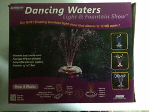 Dancing Waters Light and Fountain Show