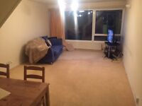 Large 2 bed Flat to Share with one female - Beckenham, South East London
