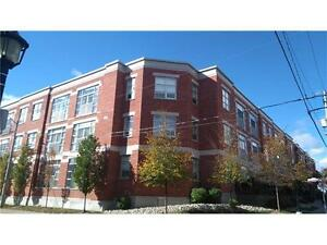 awesome CONDO /great location/ excellent price! Kitchener / Waterloo Kitchener Area image 1
