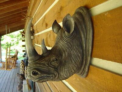 RHINOCEROS RHINO WALL MOUNT HEAD TAXIDERMY SAFARI (Rhinoceros Head)