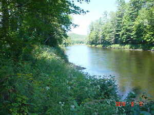 River front cottage On the Black River Waltham Qc lower price !!
