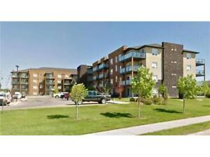 Great Condo Just Listed!
