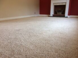 Extra large (room-sized) beige flecked floor rug in excellent condition