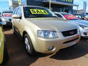 2005 Ford Territory SX TX Gold Sports Automatic Wagon