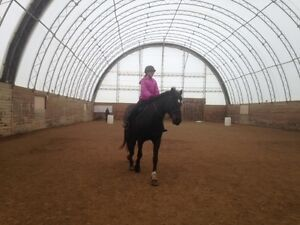 Four Riding Lessons Only $99