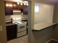 SOUTHSIDE 1 BDRM BASEMENT SUITE
