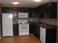 Newer 2BR self-contained legal suite in Evergreen available now!