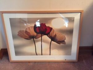 "Framed print ""Poppies"" by Yoshizo Kawasaki"