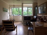 Flat in East Kilbride, 5 minutes from the mall, facing a large park, new bathroom, combi, furnished.