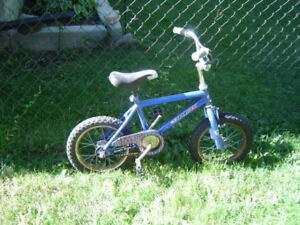 KIDS SPORTEK BIKE