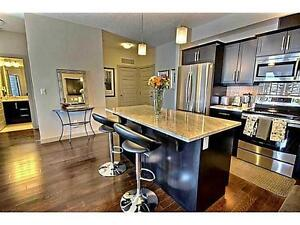 Room available in beautiful brand new condo near Southgate