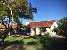 Cottage Home in leafy suburb close to Fremantle Hamilton Hill Cockburn Area Preview