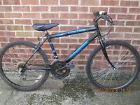 Long Time stored but little used Youths (9-13) Mountain Bike.