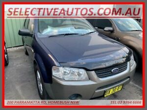 2007 Ford Territory SY TS (4x4) Blue 6 Speed Auto Sequential Wagon Homebush Strathfield Area Preview