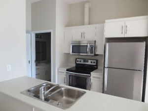 WATERFRONT DRIVE EXCHANGE DISTRICT APARTMENT FOR RENT
