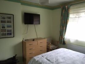Room to Rent Professional female flat mate wanted to share - luxury double room in a house