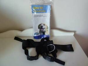 Dog harness Bedford Bayswater Area Preview