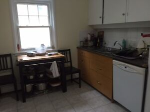 WON'T LAST: SPACIOUS FLAT near DOWNTOWN,QEll,QUINPOOL,DAL/SMU