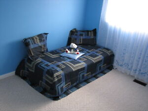 Lots of furniture in excellent condition at excellent prices Kitchener / Waterloo Kitchener Area image 2