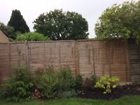 6 Ft x 6Ft Fence panels