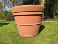 Extra Large Giant Heavy Duty Rigid Terracotta Plastic Grower Tree Plant Pot