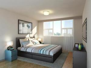 Perfect Western U Locale! Bright-Big-Renovated Suites. Rent Now! London Ontario image 4