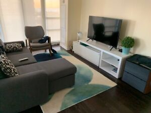 Moving in to Toronto and need furniture, TV, etc? Package deal