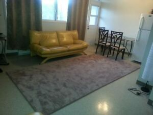 Beautiful modern styled 4.5 available weekly rentals downtown