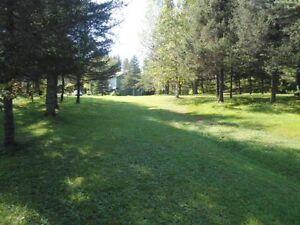 Domaine sur le bord de la rivière 2220 rg St-Joseph Girardville Lac-Saint-Jean Saguenay-Lac-Saint-Jean image 10
