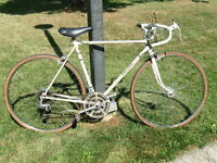 """ROAD BIKE 21""""-FRAME 27""""-TIRES 10-SPEED RALEIGH SILVER"""