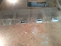 Wire Cage with feeders